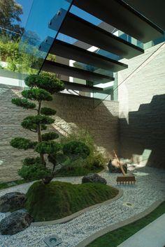 Bonsai Kieferbaum und Hügelchen aus Moos