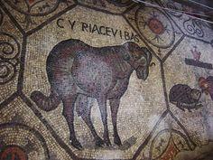 http://upload.wikimedia.org/wikipedia/commons/e/e6/Aquileia%2C_Basilica._Montone_Foto_Giovanni_Dall%27Orto.jpg