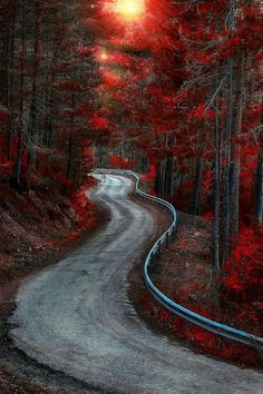 """""""Old Country Road"""""""