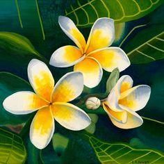 Frangipanis, oil on canvas, Elisabeth Howlett, 2009 Acrylic Painting Flowers, Acrylic Painting Canvas, Watercolor Flowers, Paint Flowers, Oil Pastel Art, Oil Pastel Drawings, Polynesian Art, Plumeria Flowers, Hawaiian Art