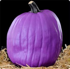 purple pumpkin | Funkins Let You Keep Your Jack O'Lantern From Year To Year ...