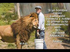 Yo amo a los animales