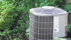 Smart shade - What can a tree do for your overworked air conditioner?