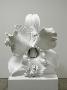 Marc Quinn The Archaeology of the Baroque 2012