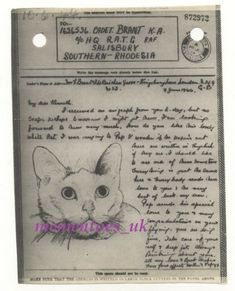 WWII Pictorial Airgraph Pussy Cat Military 1944 War London to South Africa Great Britain, Ww2, South Africa, Military, Stamp, History, Cats, Ebay, Gatos