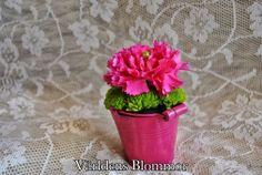 Neljika från annorlunda blomsterbutik Världens Blommor. www.varldensblommor.se 0418651159 Norra Långgatan 16 Landskrona Mittemot Polishuset