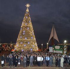 Encendida del Árbol de Navidad  Banco de Guayaquil, como auspiciante del nacimiento ubicado en el Malecón 2000, realizó la encendida del árbol de Navidad el pasado 13 de diciembre con la presencia de los principales ejecutivos del Banco y  numerosos colaboradores de la institución en la ciudad de Guayaquil, quienes compartieron un grato momento juntos.