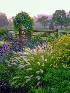 Vertical image of a beautiful country garden in fall with flowers, herbs, shrubs, trees, ornamental grasses, an arbor (arch) covered with 'Heavenly Blue' morning glory, and a fence and gate