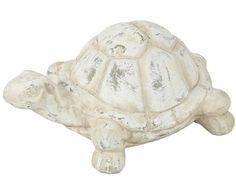 Kameninová želva