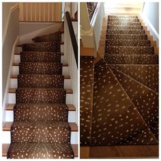 Just installed!  Couristan's Cape Town in Antelope was expertly installed on a client's staircase. @couristan #antelope #TeamColony #stairinstallation #animalpattern (scheduled via http://www.tailwindapp.com?utm_source=pinterest&utm_medium=twpin&utm_content=post90873055&utm_campaign=scheduler_attribution)