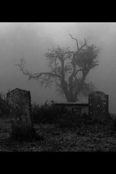 "oohh...i HATE graveyards...*walks into it while i pull my cloak closer. my hood covers my forehead as my eyes dart around and my ears tune into the dull noises of the deceased* *i read the dates on the gravestones* *mumbles* 1891, 1457, 1389-- aha! there it is... *i bend down and run my fingers over te engravemwnts.* ""North and Natasha Ashs. died in between the years 1347 to 1349. ((open Creepypasta RP))"