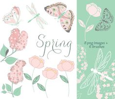 Flowers - Clip Art Collection