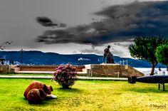 Çimenlik Kalesi Dış Bahçesi Çanakkale