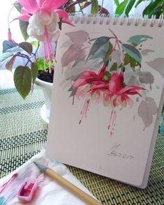 Watercolor fuschia
