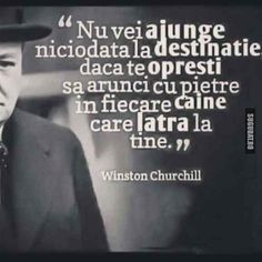 "Nu baga in seama toti ""cainii"" Winston Churchill, Life Goals, Death, Mindfulness, Photoshop, Cards Against Humanity, Messages, Funny, Quotes"