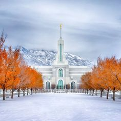 mt-timpanogos-utah-temple-warmth-and-truth