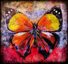 "Butterfly delusion - Limited edition print on canvas 20"" x 20"""