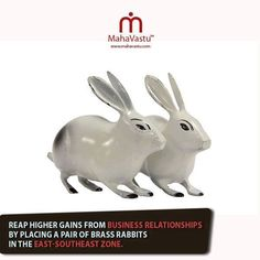 Vastu tip: reap higher gains from business relationships by placing a pair of brass rabbits in the east southeast zone Feng Shui And Vastu, Feng Shui Wealth, Feng Shui Cures, Feng Shui 2019, Occult Science, Hindu Rituals, Feng Shui House, Bamboo Art, Switch Words