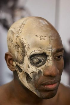 Anatomically correct labeled skull face paint.
