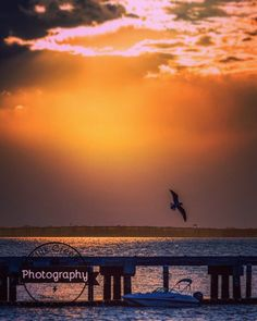 This is what a sunset used to look like. View from the James Island Yacht Club towards the James Island Expressway. #ashleyriver #sunset #charleston #charlestonpictures #elliscreekphotography #charlestonphotographer #charlestonpics #bird #instacarolina #chs #charlestonharbor #pier by ellis_creek_photography