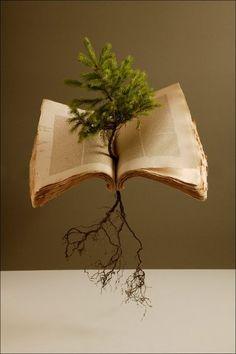 racines : le travail accompli : papier : ce qui est écrit branches : ce qui se voit