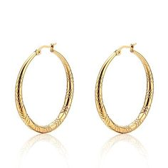TIGRADE Stainless Steel Yellow Gold Plated Circle Round Hoop Earrings for Women by TIGRADE -- Awesome products selected by Anna Churchill