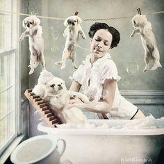 Dog Wash  photo manipulation by Kassandra