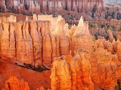 Bryce Canyon • UTAH  -  USA
