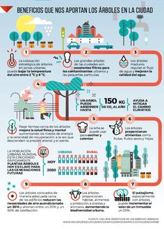 Los beneficios de los árboles en la ciudad f131b846832