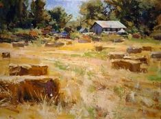 Golden Summer   by Mike Wise  www.mikewisestudio.com Beautiful work by Whidbey Island artist Mike Wise. Seascape Paintings, Paintings I Love, Landscape Paintings, Suffolk Sheep, Sheep Art, Impressionism Art, Cow Painting, Whidbey Island, Wheat Fields