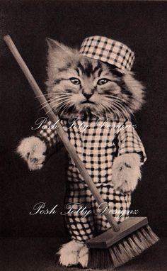1920s Cat Cleaning Fancy Dress Vintage