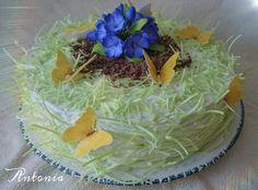 #torte #torten #blumen #schmetterlinge #tiramisu #selbstgemacht #backen #торт #торты #бабочки #травка #цветы #выпечка #вкусно #деньрождения #подарок
