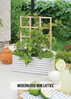 Make a mini grid lattice to add height to your outdoor planters! With @LCpintrest #partner
