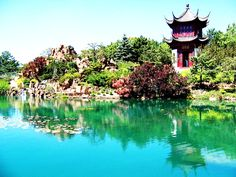 9 Monumental Places to Go in Montreal . Plant Species, Bird Species, Chinese Garden, Quebec City, Canada Travel, Summer Travel, Botanical Gardens, Beautiful Images, Gazebo