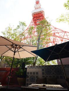 Terrace Dining TANGO photos. Tokyo Tower / Zojoji Temple, Western Italian, Western SAVOR JAPAN -Japanese Restaurant Guide-