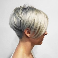 Gray and Blonde Metallic Pixie Bob