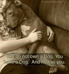 Subtle allocated dog lovers check these guys out Cute Puppies, Cute Dogs, Dogs And Puppies, Doggies, Animals And Pets, Funny Animals, Cute Animals, I Love Dogs, Puppy Love