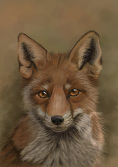 The Fox by *Sarahharas07 on deviantART