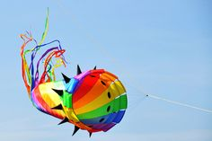 Beautiful kite