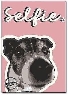 Jack Russell Selfie Robbie Dog Pink