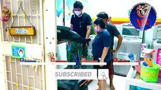 จัดส่งลู่วิ่งไฟฟ้า Vtech รุ่น VT ONE ไซส์ใช้งานในบ้าน MADE IN TAIWAN ป... Horizon Fitness, Youtube, Youtubers, Youtube Movies