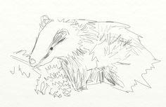 Badgers are odd. #30daysofcreativity