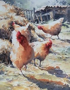 art acuarela Watercolor Painting By Christian Graniou Watercolor Pictures, Watercolor Artwork, Watercolor Bird, Watercolor Artists, Watercolor Animals, Watercolor Landscape, Watercolor Illustration, Simple Watercolor, Chicken Painting