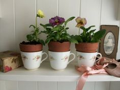 Flowers in vintage teacups from Lavender House Vintage www.lavenderhousevintage.co.uk #vintage#flowers#plants#shabbychic#home#interiors