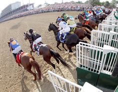 In a photo taken with a fish eye lens, horses leave the starting gate. A record crowd of 165,307 at Churchill Downs watched I'll Have Another overtake Bodemeister late in the race for the win.