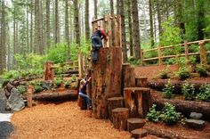 Cougar Climber_OREGON PARKS AND RECREATION DEPARTMENT