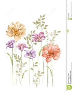 watercolor-illustration-flower-set-simple-white-background-51533054.jpg (1043×1300)