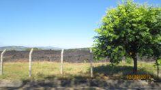 Lava Rocks from the Volcano El Boqueron