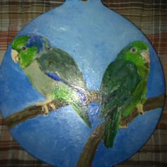 Beautiful Painted Ornament that was a gift from artist Jill Casteel on FB.  My two Pacific Parrotlets, Emmie (RIP) & Ziggy.  <3
