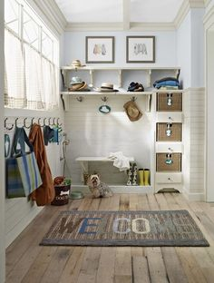 some kind of rinsing station in mudroom?  good for boots, pets, feet, wet snow gear etc